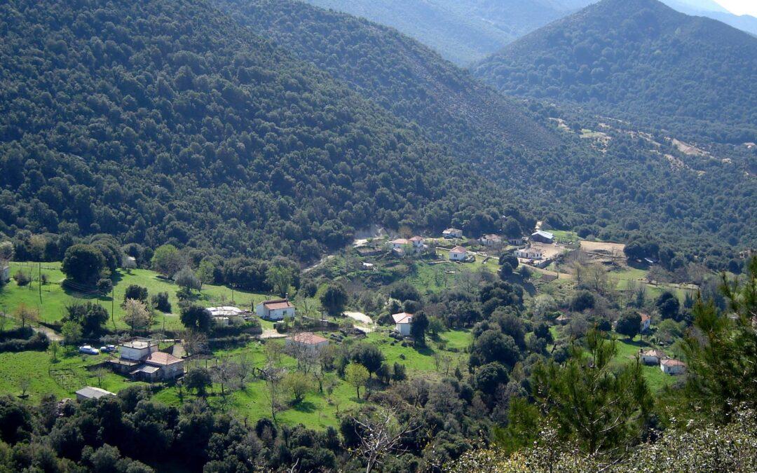 «Γλαβίτσα», (τώρα Αυλότοπος Σουλίου)-Το χωριό που εκδικήθηκε αλύπητα ο Αλή Πασάς!